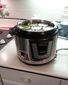 ENIMAGE1344190860255 3 238x300 My Electric Pressure Cooker is Great for Making Jam!
