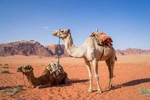 wadi-rum-1120371_960_720